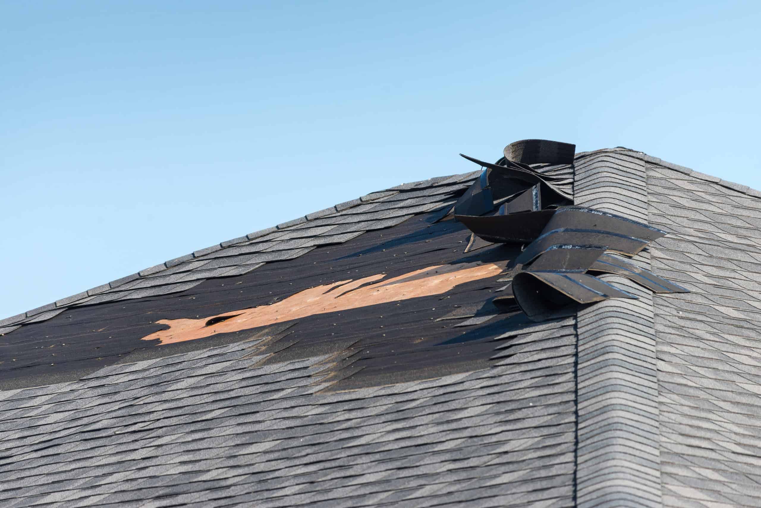Asphalt shingle roof with wind damage